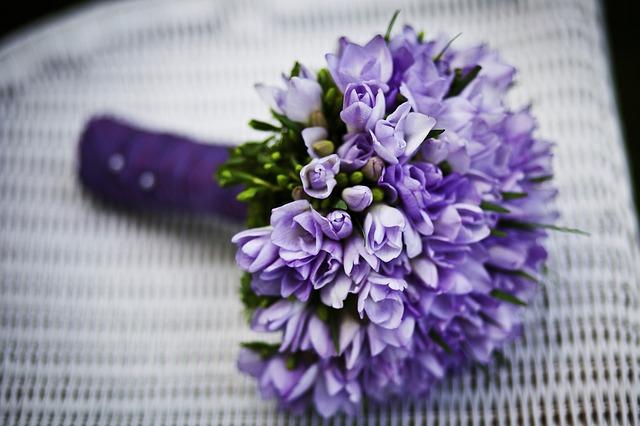 fialové květiny na židli
